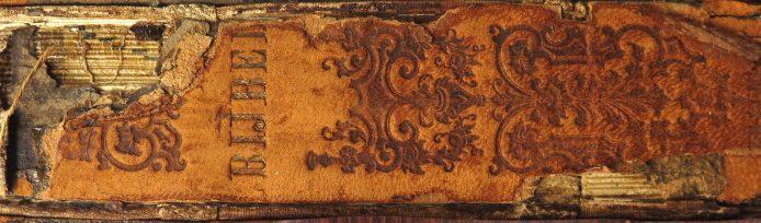 Bijbel-rug-694x204